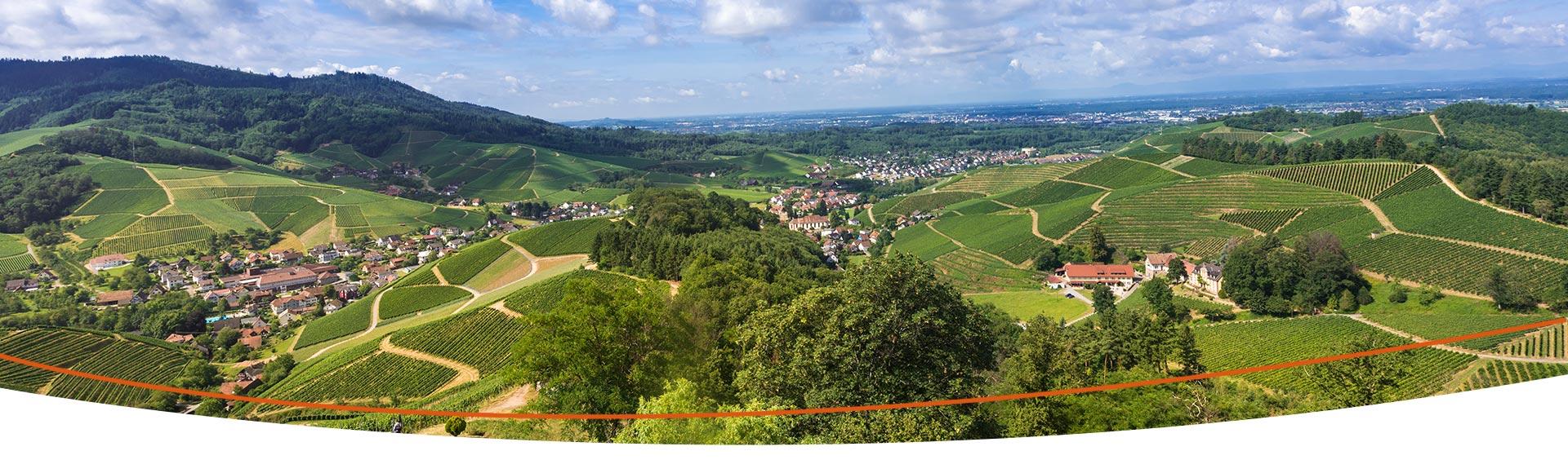shutterstock.com - Horst Lieber